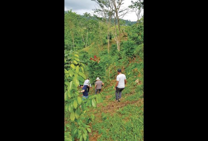 caficultores iniciando la ruta del café