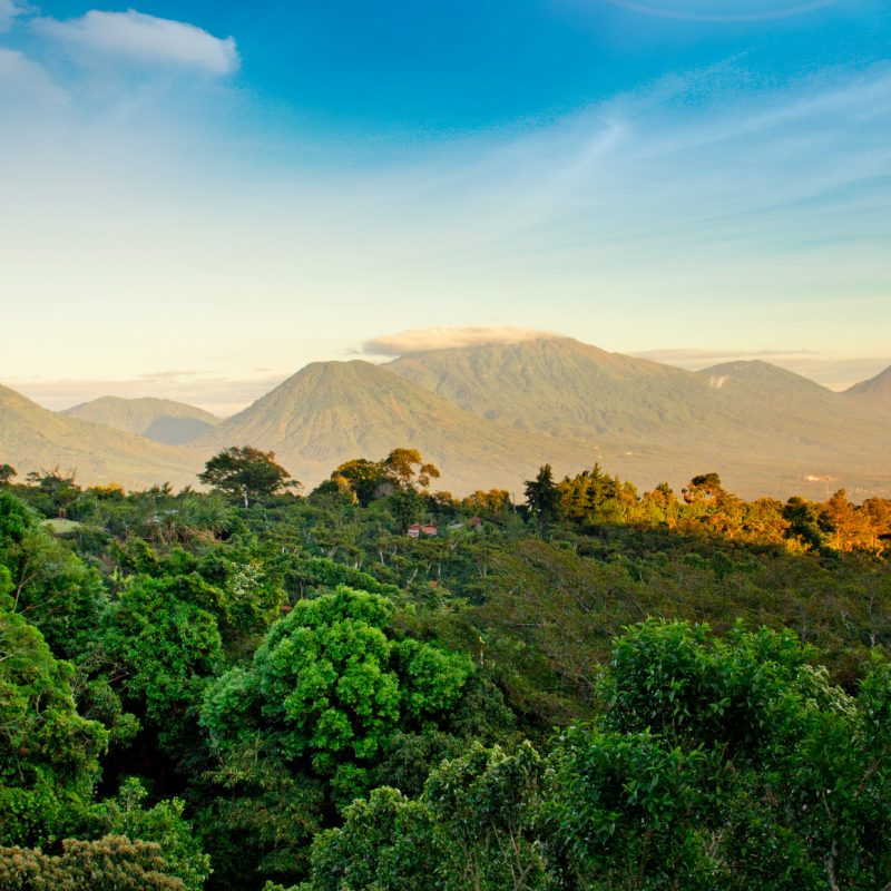 National park of the Volcanoes in El Salvador