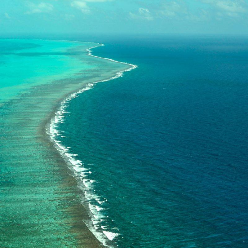 Arrecife en Belice