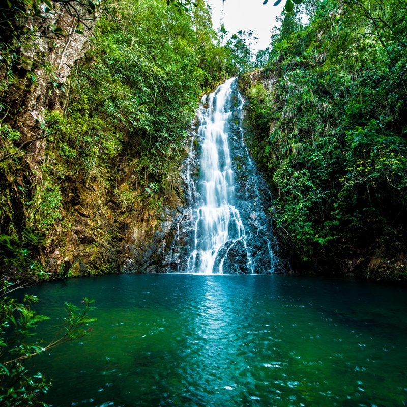 Selvas Tropicales en Belice