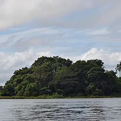 Central America. Nicaragua Solentiname in Nicaragua