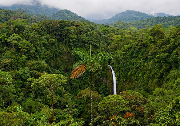 Centroamérica Esencial, Guatemala y Costa Rica en profundidad