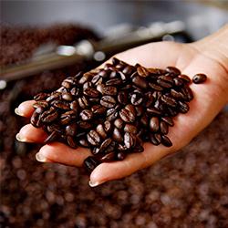ruta del café nicaragua centroamérica