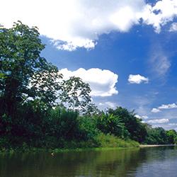 Parque Nacional de Darién en Panamá, Centroamérica Natural