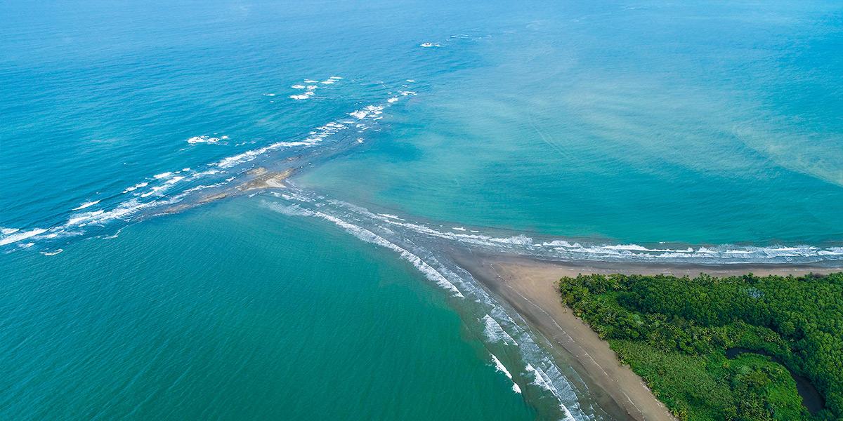 Image result for parque nacional marino ballena costa rica