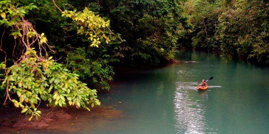 ver centroamerica costa rica bahia drake parque corcovado