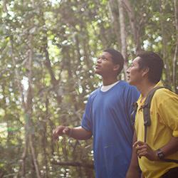 Parque Natural Elijio Panti en Belize