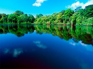 Llénate de pura vida en Costa Rica