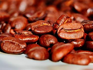 Café - Cacao - Honduras - Costa Rica