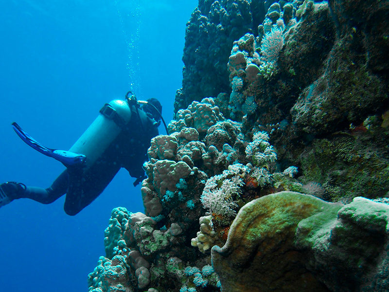 El Salvador - Submarinismo - Centroamérica
