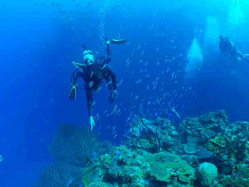 Honduras - Submarinismo - Centroamérica