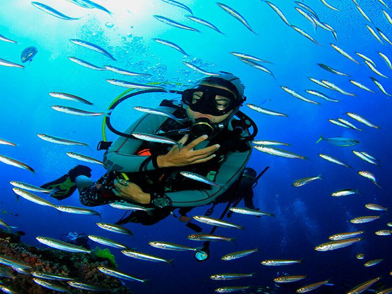 Costa Rica - Submarinismo - Centroamérica